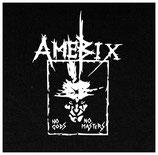 Amebix - No Gods No Masters