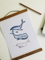 Poster 3 whales A4