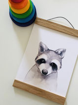 Poster racoon A5