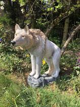RI098 Wolf Figur lebensgroß steht auf Fels