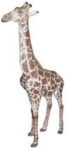GZZ006 Giraffe Figur lebensgroß