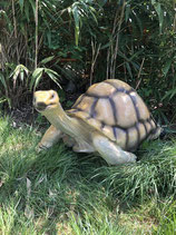 RIG411 Landschildkröte Figur Lebensgroß