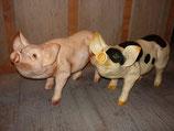 123060 Schwein klein