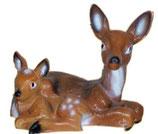520480 Reh liegt mit Bambi