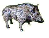 520050 Wildschwein steht