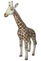 GZZ014 Giraffe Figur