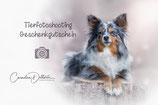 Tierfoto Geschenk Gutschein