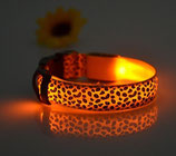 LED-Halsband (Bat) orange LEOPARD