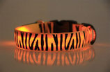 LED-Halsband (USB) orange ZEBRA
