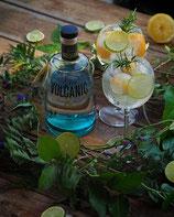 Volcanic Gin - Aktueller Preis: 45.00