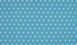 "Cotton Poplin Print ""hellblau Star"""