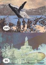 Postkarten-Set - ALLE -13 Stück zum Knüllerpreis!