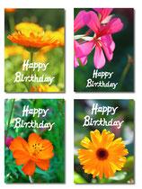 Geburtstagskartenset Flowers (4 Klappkarten mit 4 Kuverts) SHP2