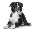 PHA Pfoten Schutz Hund  125 ml