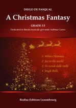 A Christmas Fanasy
