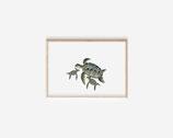 Mutter Meeresschildkröte 13x 18cm - kunstdruck