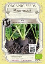 有機種子 ブラックスパニッシュラウンド(黒大根)