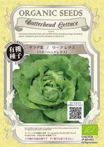 有機種子 サラダ菜バターヘッドレタス(リーフレタス)
