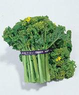食用 菜の花