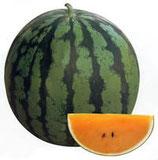 サマーオレンジミドル