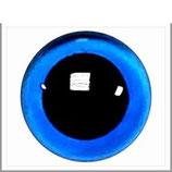 Veiligheids ogen blauw