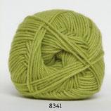 Ciao Trunte col.8341 helder groen