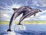 Voorgedrukt stramien Dolfijnen
