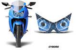 ヘッドライトアイ Ninja 250R