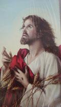 イタリア ご絵 Lippi 23  10×6センチ 紙裏白