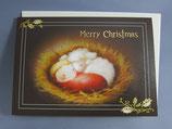 女子パウロ会 クリスマスカード 定型 いもとようこ ねんね
