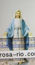 御絵 無原罪の聖母 D