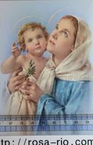 ご絵 手判 聖母子E C-50 14×9センチ 紙裏白