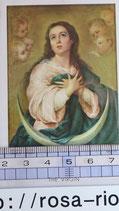 ご絵 聖母マリア 絵画 A-6  THE VIRGIN