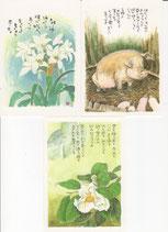 星野富弘詩画集はがき 3枚セット 1