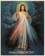イタリア FB ご絵 20×25センチ紙 8.10-123 いつくしみのイエス