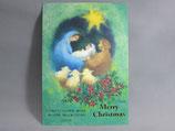 女子パウロ会 クリスマス ポストカード 定型 油絵風 聖家族 緑