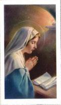 聖母マリア 祈り C 聖書