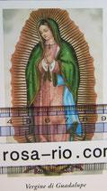 グアタルーペの聖母 ご絵(イタリア)