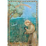 イタリア 聖なるカード、鳥に説教する聖フランシス SA002026