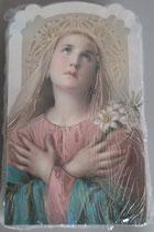 イタリア ご絵 CLARA 41 12.5×7.5センチ 大判飾り縁箔押し 紙裏白