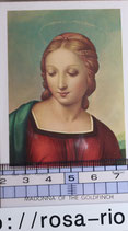 ご絵 聖母マリア 絵画 A-5 MADONNA OF THE GOLDFINCH