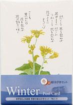 グロリアアーツ 星野富弘 ポストカード冬の絵はがき 詩画集 7枚セット