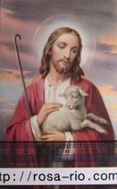 ご絵 手のひらサイズ 子羊を抱くイエス A 14×8㎝ 裏白