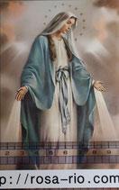 ご絵 手判 無原罪の聖母B C-34 14×9センチ 紙裏白
