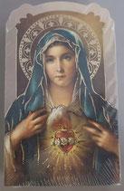 イタリア ご絵 CLARA 14 12.5×7.5センチ 大判飾り縁箔押し 紙裏白