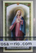 イタリア パウチご絵 御心の聖母B 11×7センチ