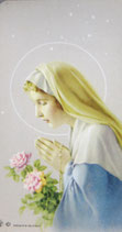 聖母マリアご絵  祈りA ピンクバラ