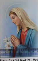 ご絵 手判 聖母マリア百合 C-57 14×9センチ 紙裏白