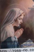 ご絵 手判 聖母マリア聖書 C-58 14×9センチ 紙裏白