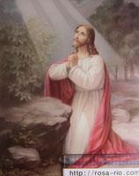 ご絵 大 ゲッセマネの祈り 20×25㎝ 紙裏白